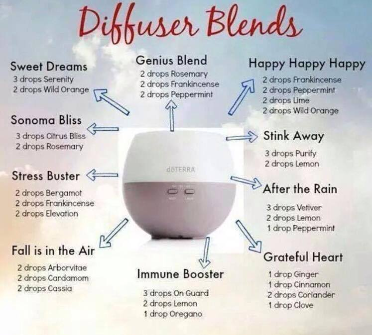 Humidifier Vaporizer Or Diffuser Sustainable Life Health
